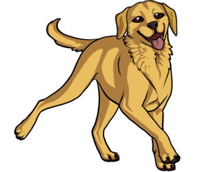 Labrador Retriever border=