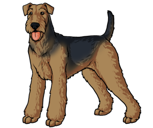 Airedale Terrier border=