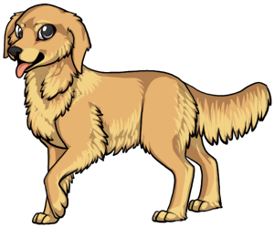 Golden Retriever border=